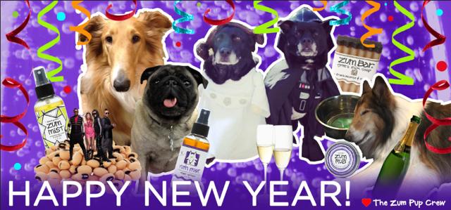 NYE-new-years-eve-dogs-pups-confetti-zum-life-mist-yum-rub-champange